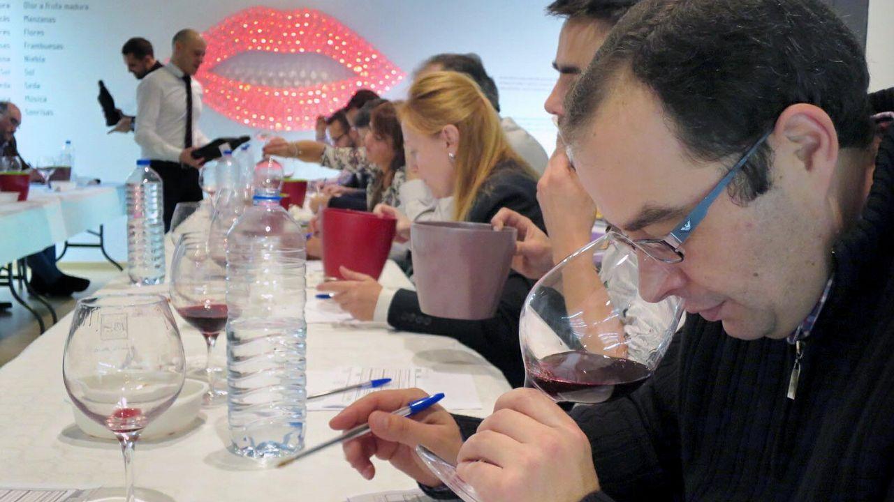 (Español) V Cata Concurso de Vinos Patrimonio Ribeira Sacra